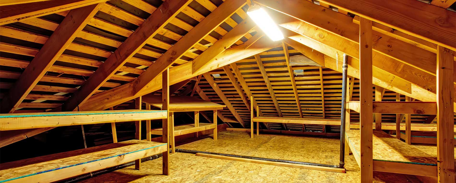 Attic Cleaning