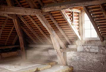 When It's Time to Hire A Professional to Clean Your Attic  | Attic Cleaning San Bruno, CA