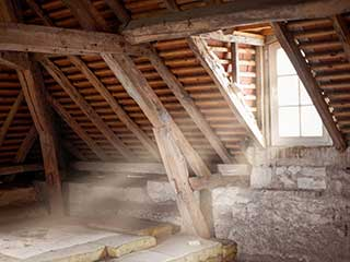 Hire A Professional to Clean Your Attic  | Attic Cleaning San Bruno, CA